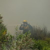 A firefighter sprays water on a brush fire Wednesday near San Onofre State Park near Trestles. The fire was reported by Orange County Fire Authority to be contained after it burned about two acres. Photo: Courtesy of Ed Burke