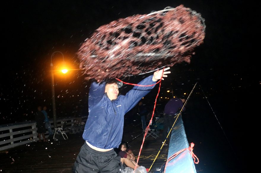 Don Zhou casts out a hoop net Saturday, Oct. 1, over the side of San Clemente Pier during the first day of the spiny lobster season. Photo: Eric Heinz