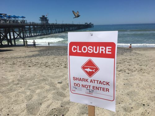 The city of San Clemente closed its beaches following a shark attack at San Onofre State Beach on Saturday. Photo: Eric Heinz