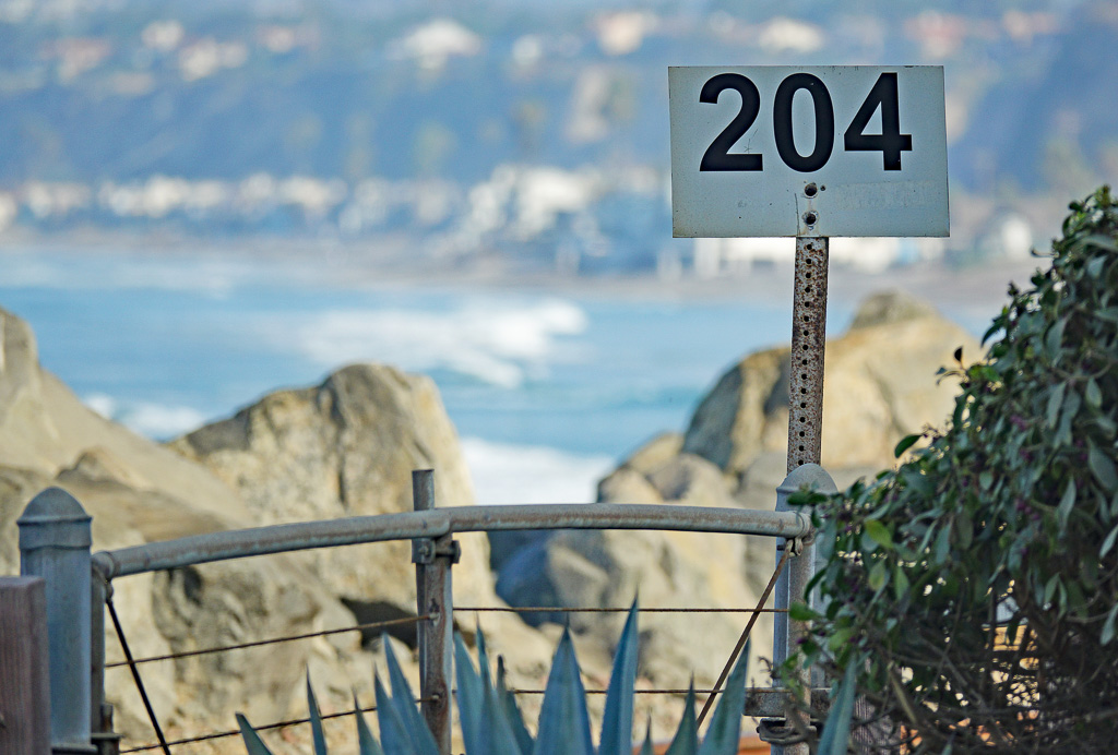 What's in a name? '204': The Meanings Behind Certain