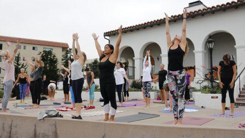 Casa Wellness - Yoga