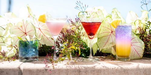 These Instagram-worthy cocktails with a view are on the menu at the Botanical Beach Bar-themed pop-up at Shutters on the Beach in Santa Monica. (Photo by Angela Conners Treimer/Shutters on the Beach)